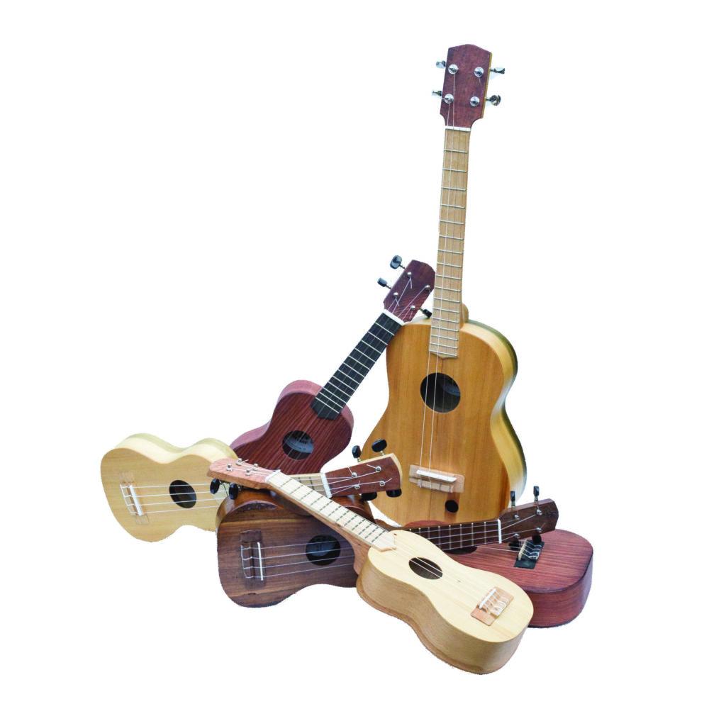 Zeke Leonard ukulele workshop